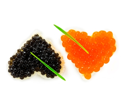 black-and-red-caviar-anastasiya-zhitenskaya
