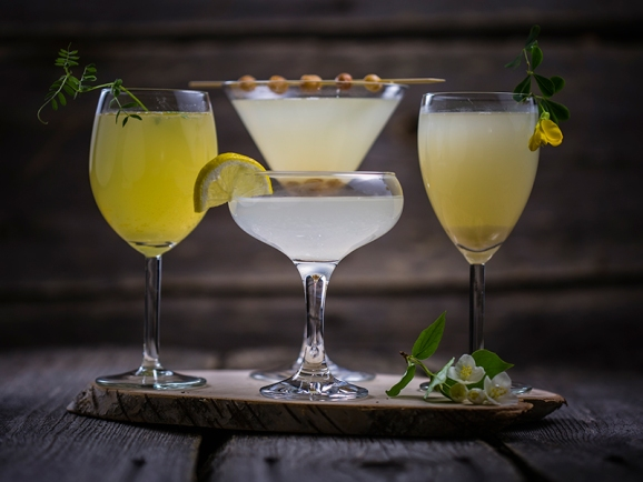 non-alcoholic-digestive-Anastasiya-Zhitenskaya