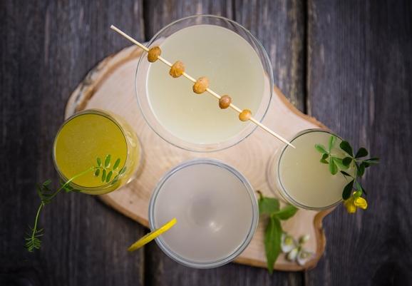Probiotic-drinks-flatlay-Anastasiya-Zhitenskaya